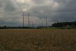 Field and power line
